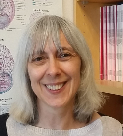 Photo of Suzanne H. Mitchell, Ph.D.