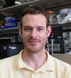 Photo of Matt Whorton, Ph.D.