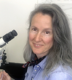 Photo of Teresa Nicolson, Ph.D.