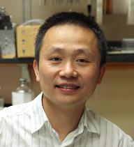 Photo of Haining Zhong, Ph.D.