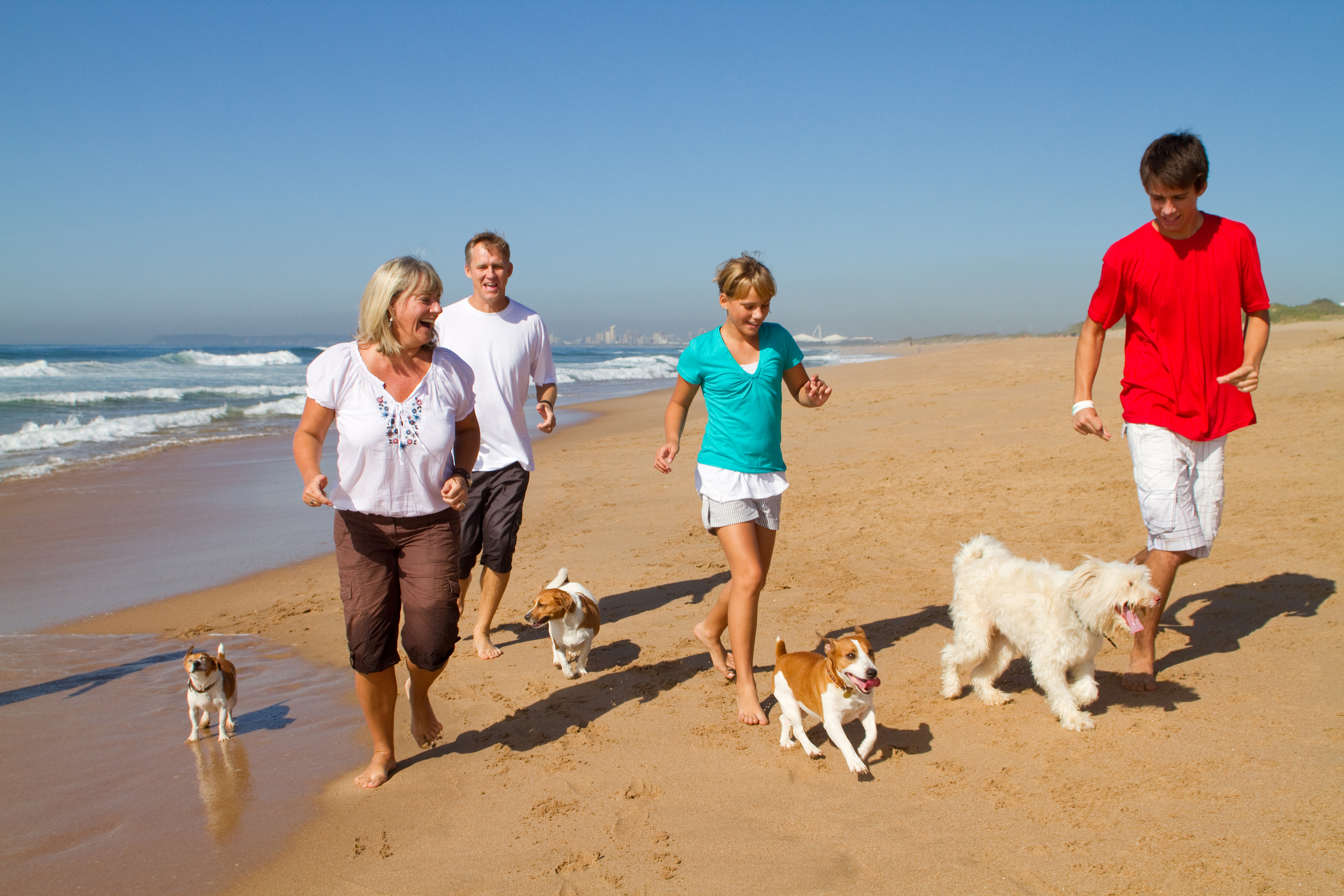Family of four with their four dogs running on the beach