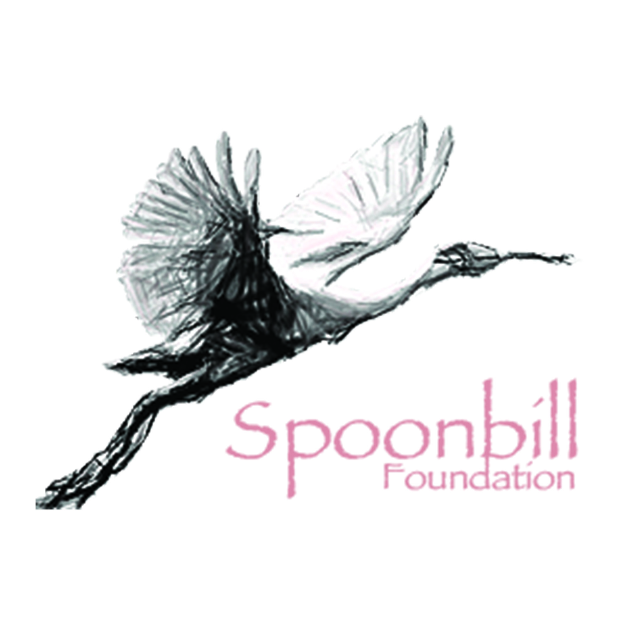 Spoonbill Foundation logo