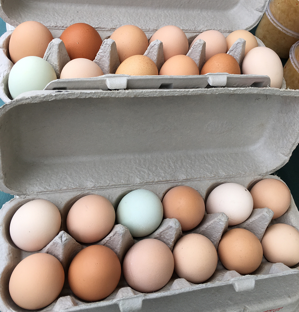 brown, green and pink eggs in a carton