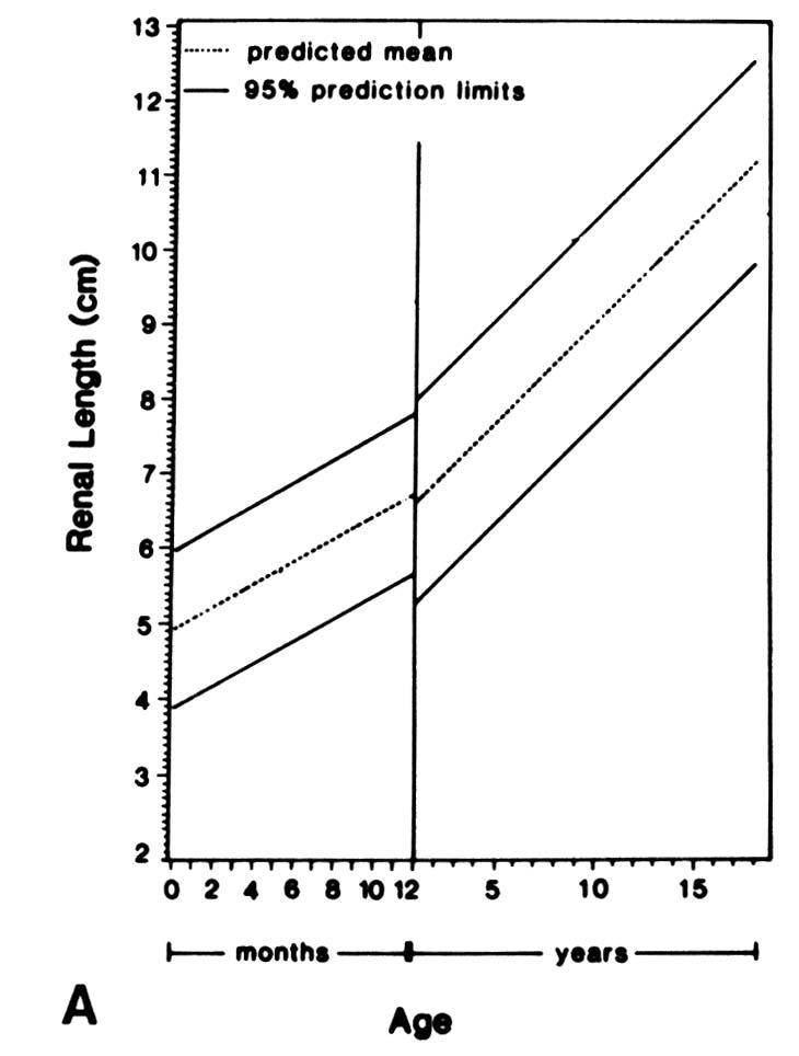 Pediatric Radiology Normal Measurements Ohsu