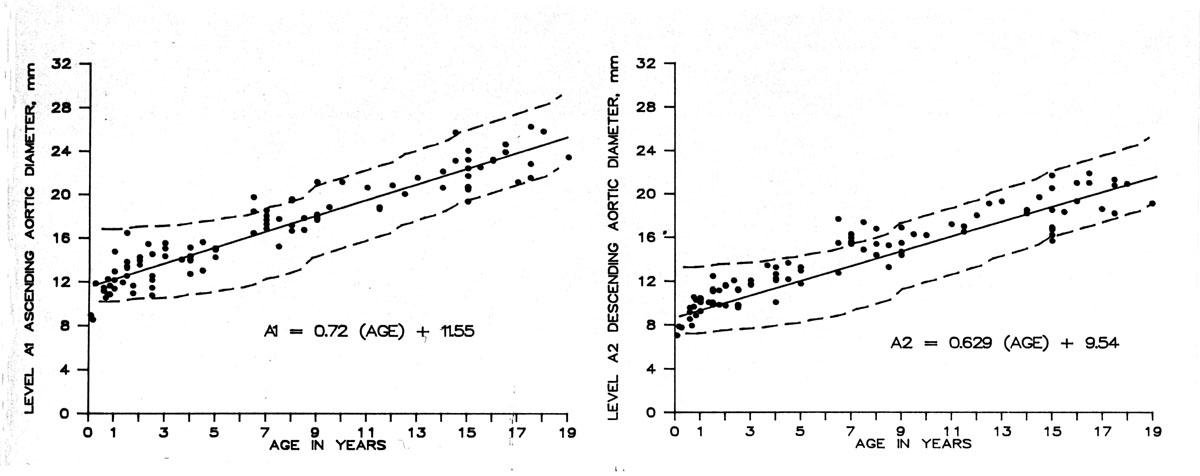 Pediatric Radiology Normal Measurements | OHSU