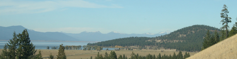 Klamath Falls horizon with trees