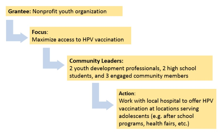 Focus area 1 example diagram shows steps to maximize access to HPV vaccination