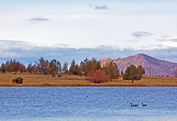 Central Oregon lake with two geese swimming in it with a mountain behind