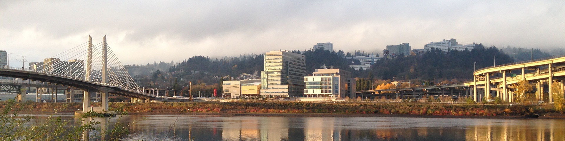 The Knight Cancer Research Building and Roberston Life Sciences Building as seen from across the Willamette River in the autumn