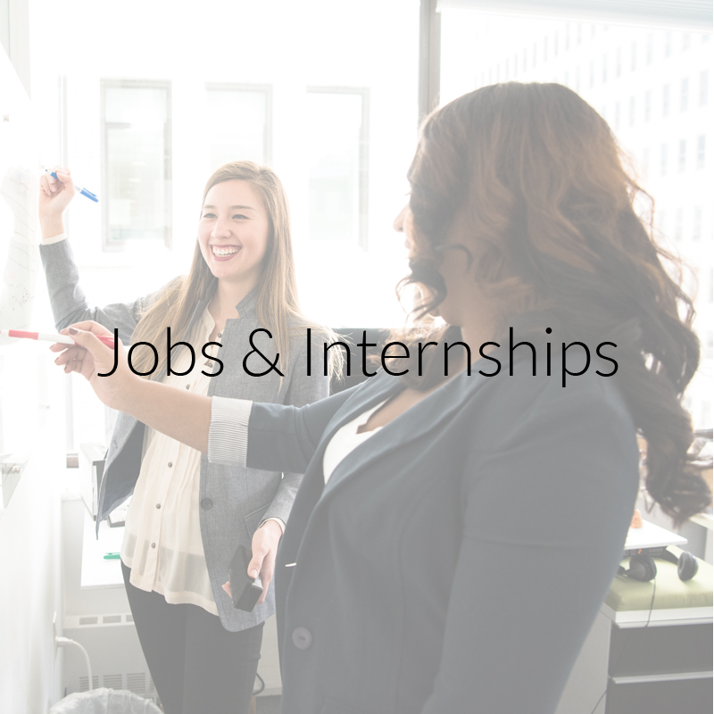 Jobs and Internships button