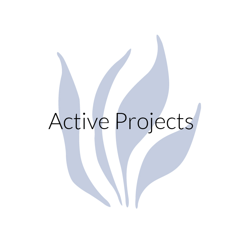 Active projects button