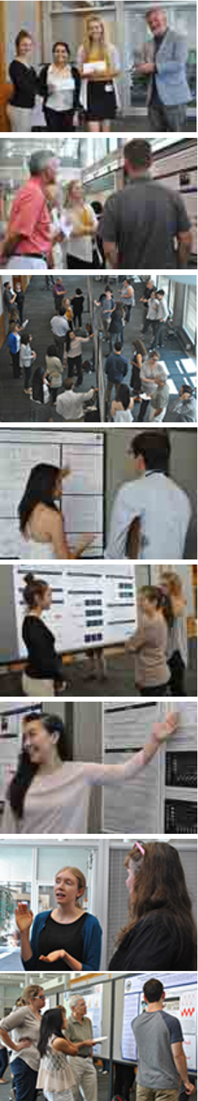 Images from the 2015 summer intern poster session where the interns presented their research in poster form and explained their research to the Institute's faculty and staff