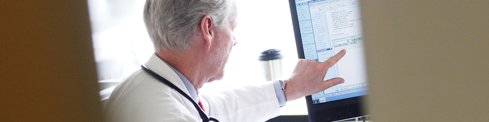 Picture of Physician pointing to computer screen