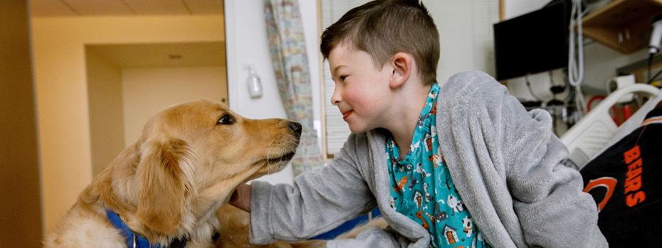 Davis, service dog, greeting a boy in a patient room at OHSU