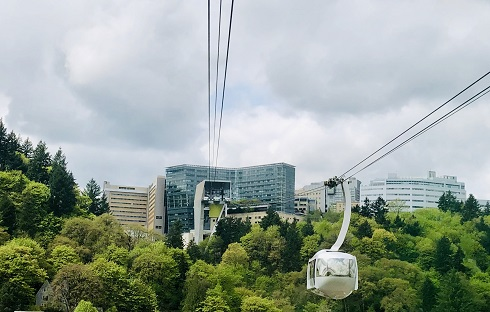 Marquam Hill from the Tram