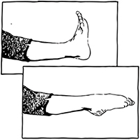 Ankle pumps exercise