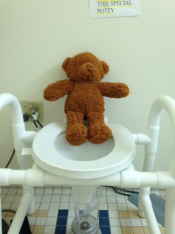 A stuffed bear demonstrating how to use the special potty