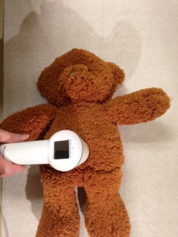 A stuffed bear having it's temperature taken with external thermometer