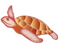 Turtle: Wayfinding Icon for the Doernbecher Emergency Room