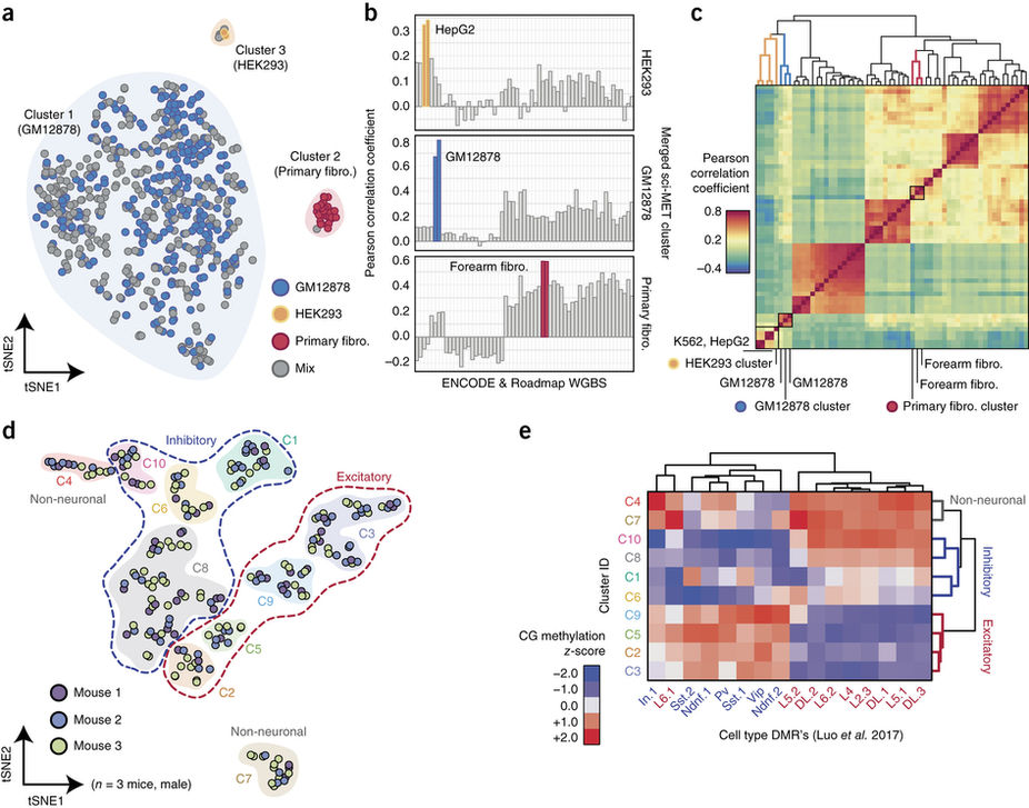 Adey-Figures-Highly-scalable-generation-of-DNA-methylation-profiles-in-single-cells_1