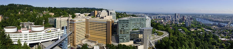 Panoramic view of OHSU's Marquam Hill campus.