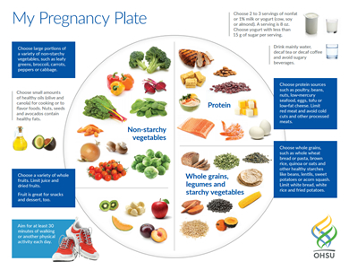 My Pregnancy Plate | Center for Women's Health | OHSU