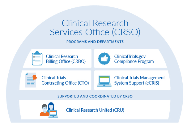 Graphic depicting the structure of the departments and programs within Clinical Research Services Office.
