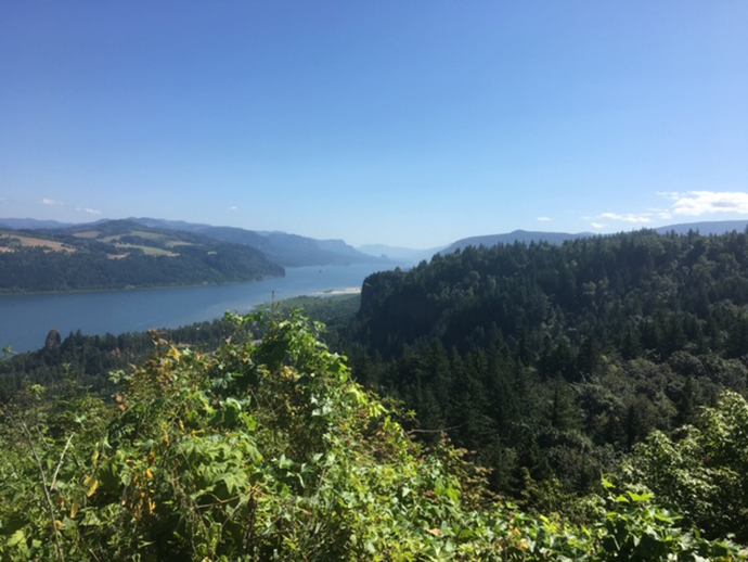 Dr. Wilson travels towards The Dalles and enjoys a spectacular vista of the gorge.