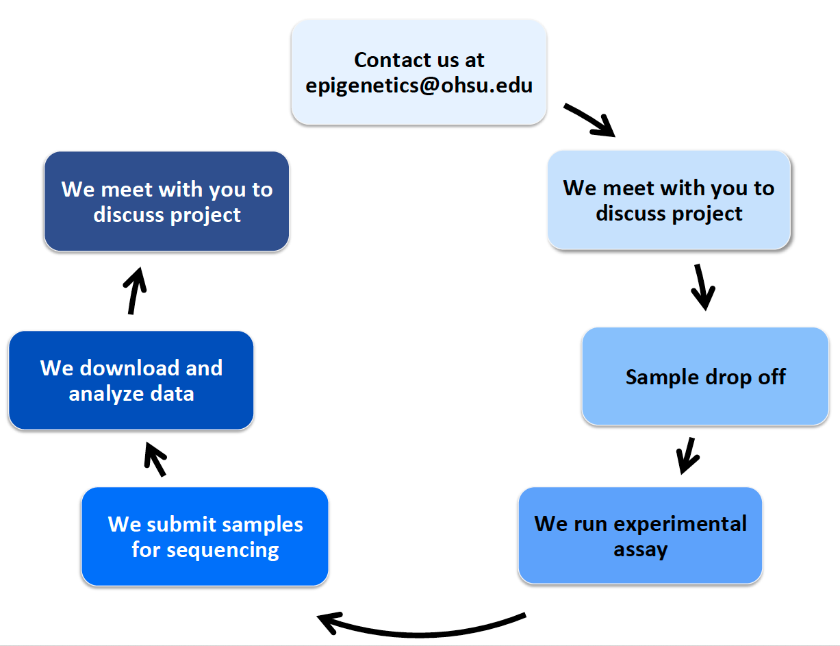 project-lifecycle-diagram