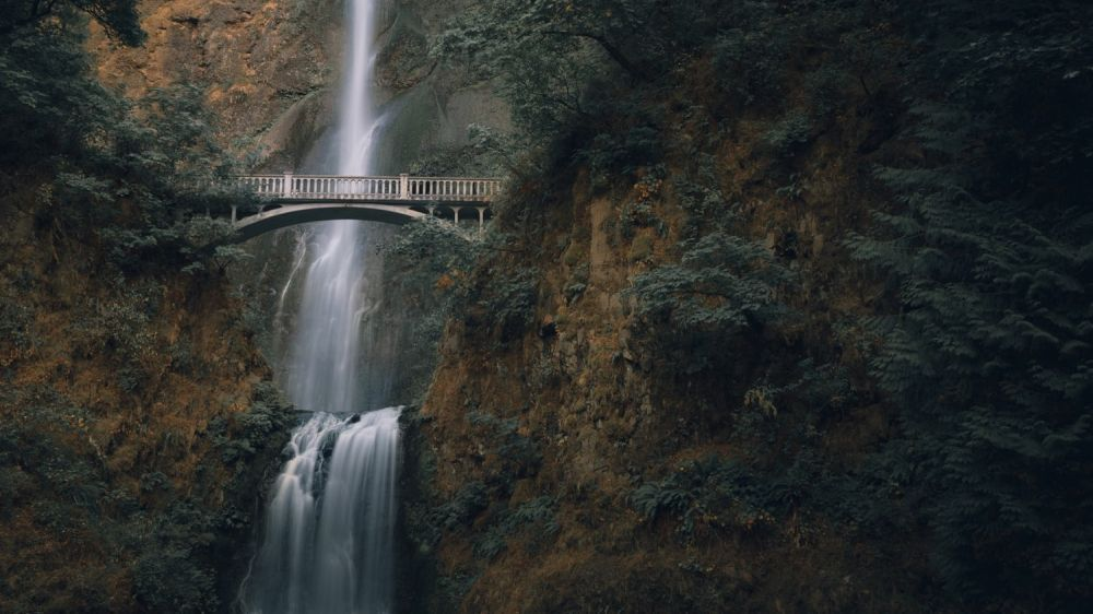 Wide view of Multnomah Falls and the Benson Bridge in front of it.