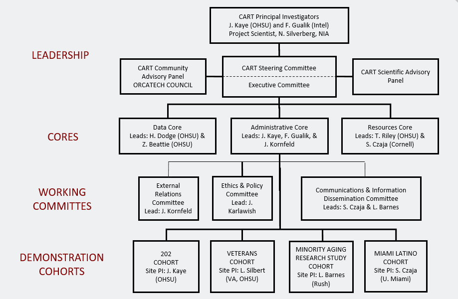 Organizational chart of the staff members involved with the CART study