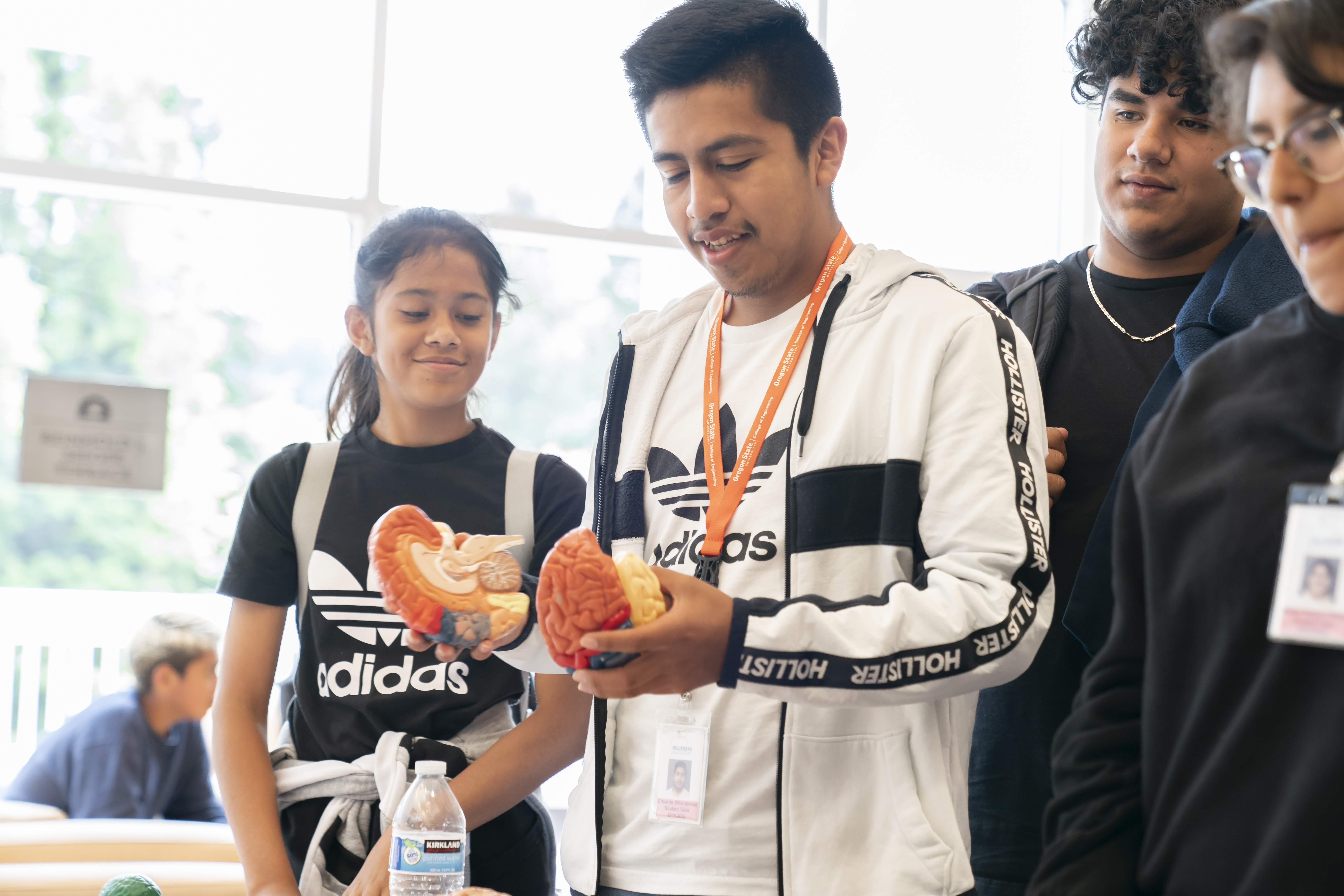 A high school student holds two halves of a model brain at Si Se Puede 2019