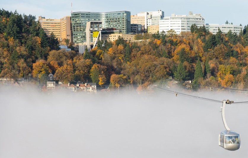 OHSU and tram with fog in fall