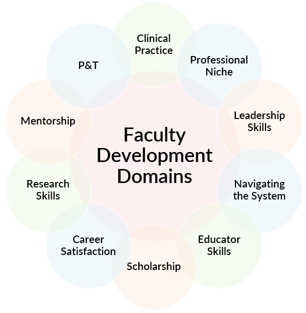 Graphic depicting the ten domains of faculty development, including clinical practice, educator skills, research skills, P&T, professional niche, navigating the system, career satisfaction, mentorship, leadership skills, and scholarship.