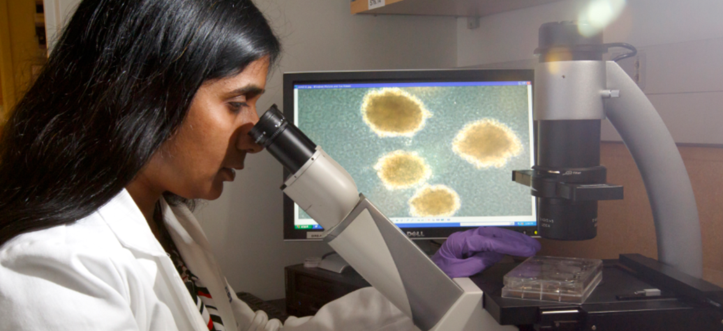 Anupriya Agarwal, Ph.D., assistant professor of medicine (hematology and medical oncology) in the OHSU School of Medicine and researcher with the OHSU Knight Cancer Institute, is working to find new treatment options for those living with acute myeloid leukemia.