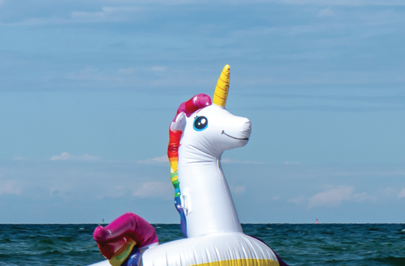 inflatable unicorn floats in the water
