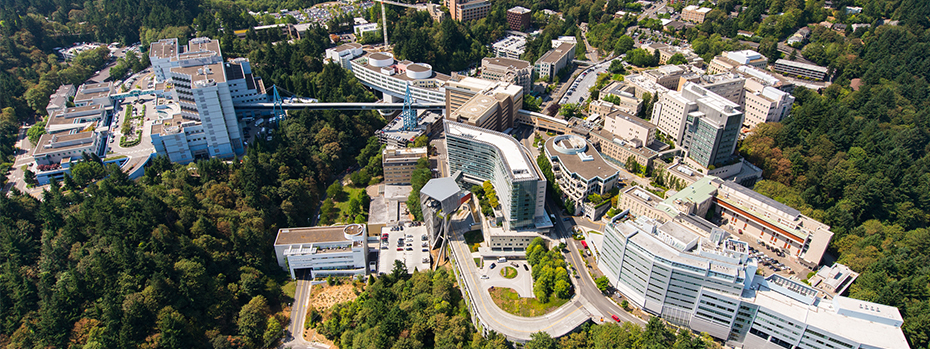 Birdseye view of Marquam Hill campus