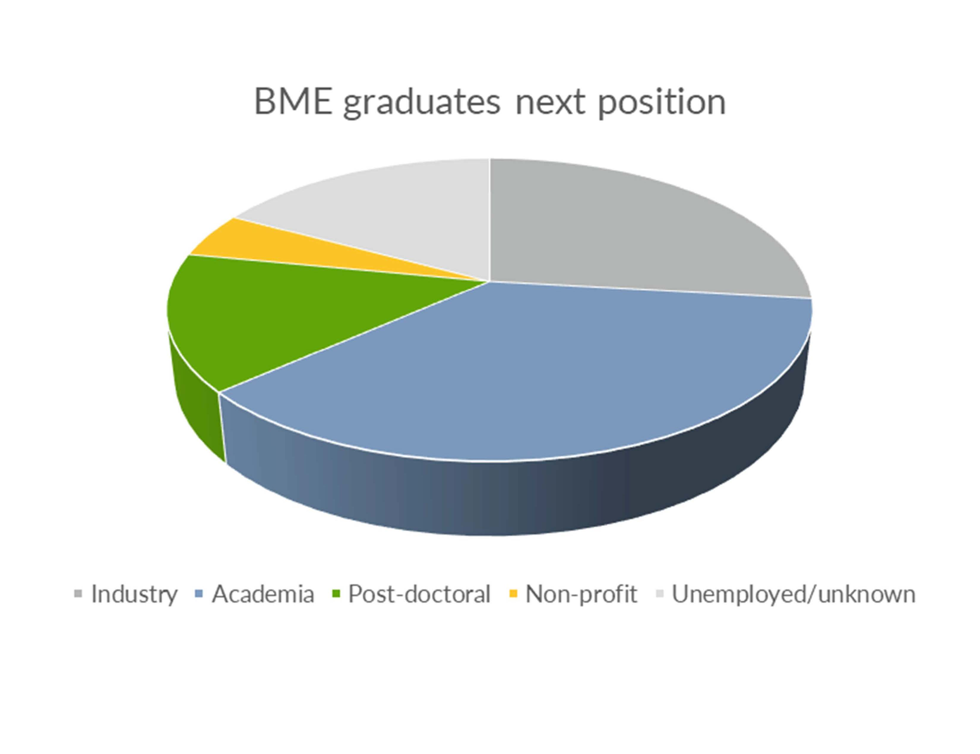 Pie graph of Biomedical Engineering graduates next position