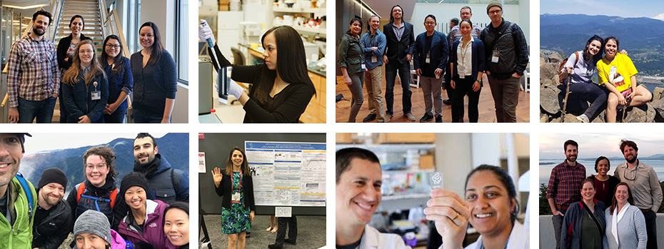 A photo montage of biomedical engineering students and faculty