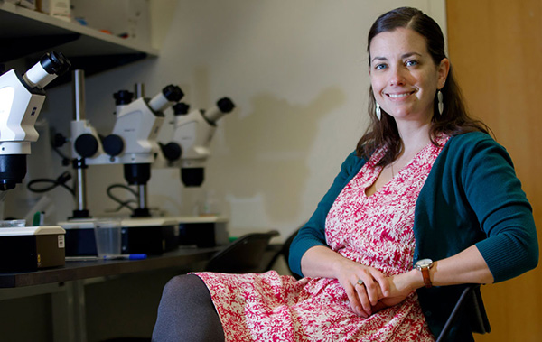 Kelly Monk, Ph.D., is an international expert on cells that make myelin, the nerve sheath at the root of many neurologic conditions. Her research team is working to decode myelin biology.