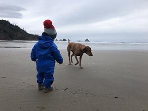 A small child and a dog at the beach on a cloudy day.