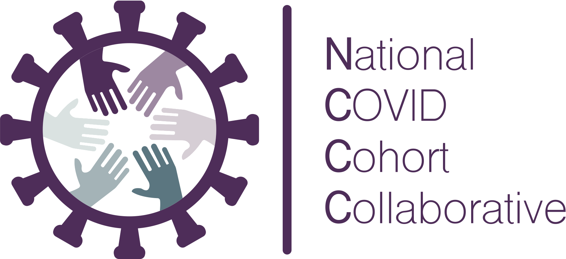 Logo for the National COVID Cohort Collaborative.