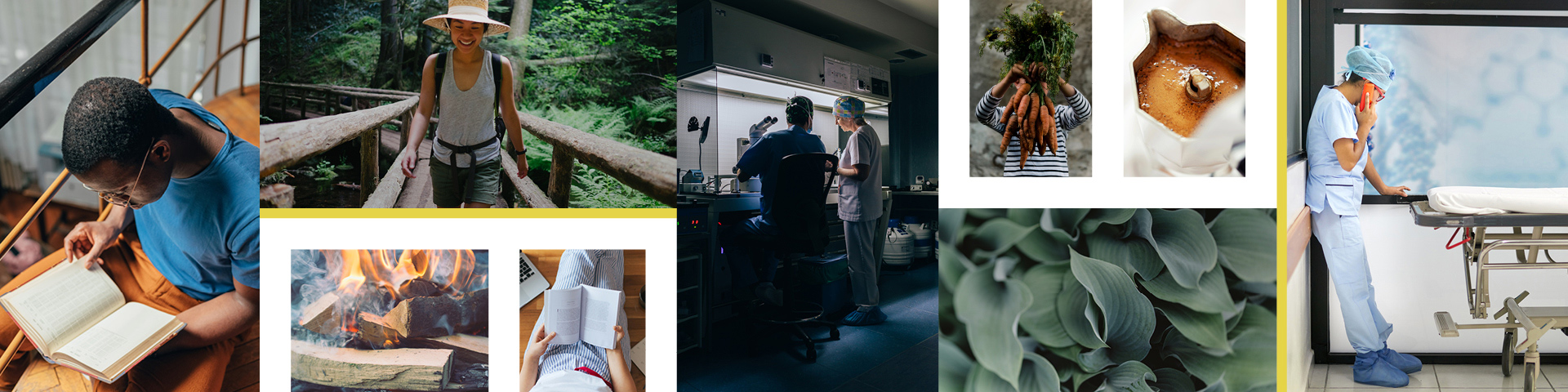 A collage of images containing people, outdoors, studying