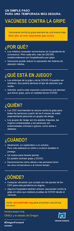 A preview image of a Spanish language infographic about the benefits of getting a flu shot.