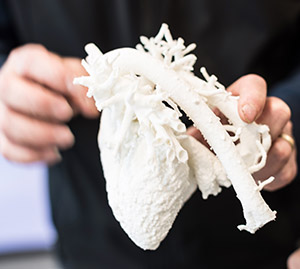 Photo of a 3D-printed heart model held in a person's hand