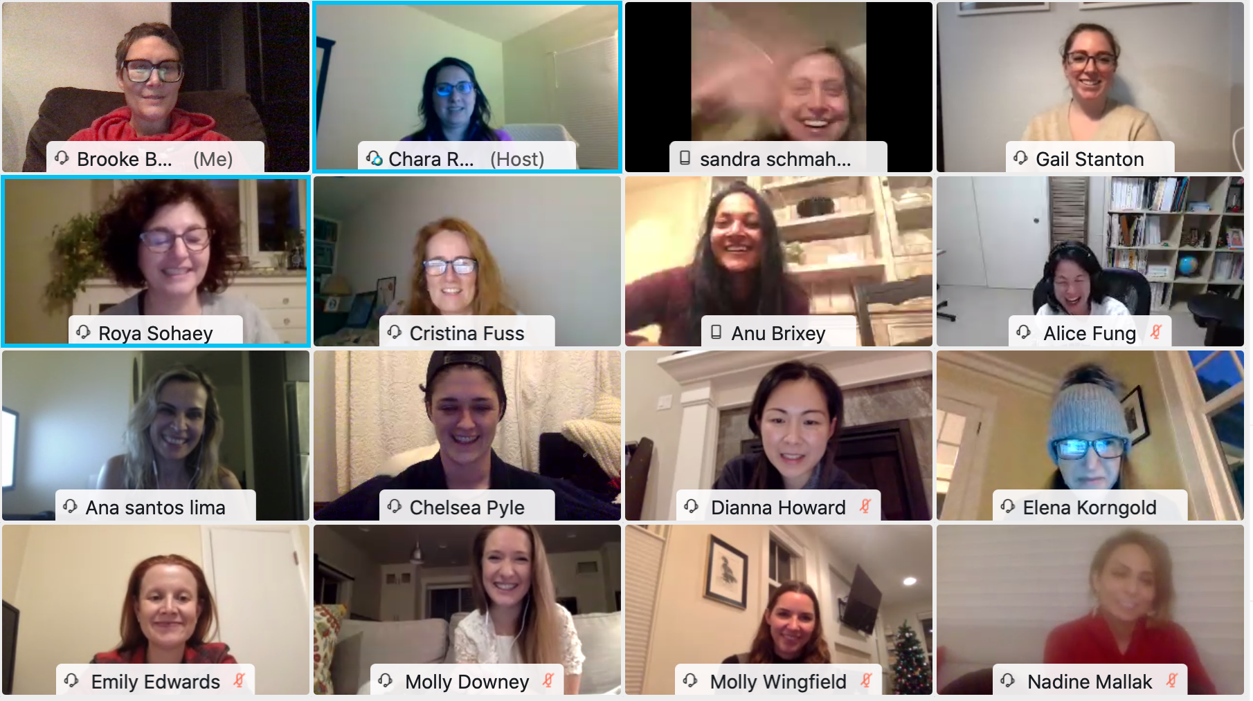 Women in Radiology: 2nd Annual and 1st Virtual Holiday Gathering