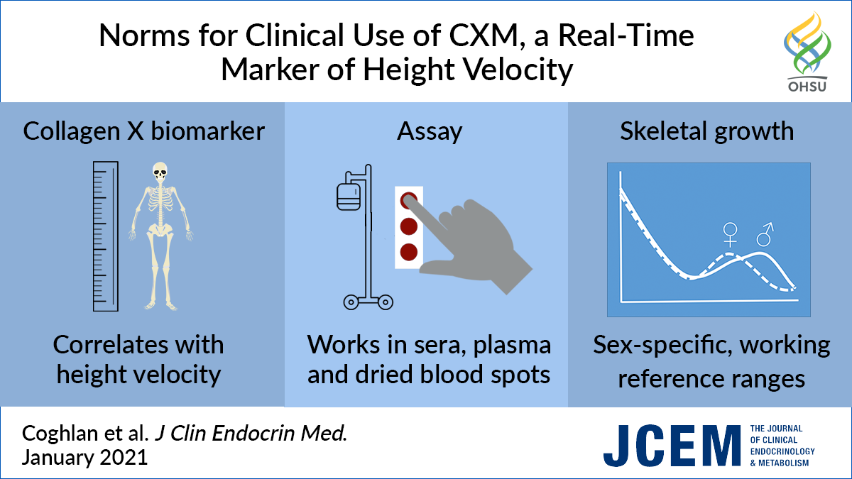 Visual abstract Norms of Clinical Use of CXM research article